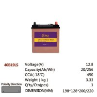 40B19LS 12.8V 20AH 256Wh 450CCA LiFePo4 LFP Lithium-iron Phosphate Battery Pack with Embedded BMS